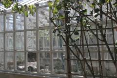 160_greenhouse_20140914_28